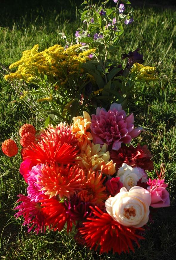 Weekend flowers.