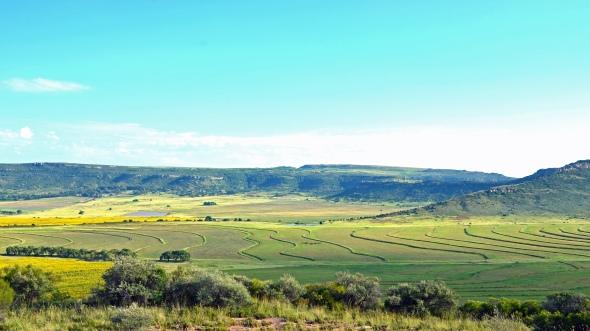 Fallow land contours.