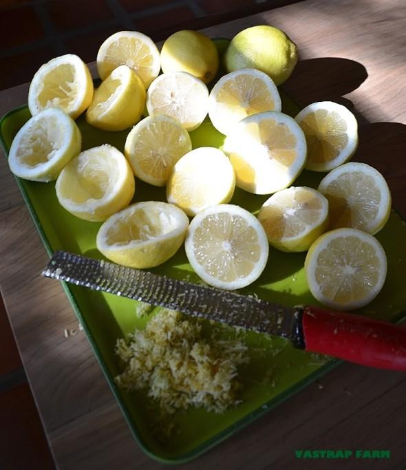 Preparing the lemons and rind.
