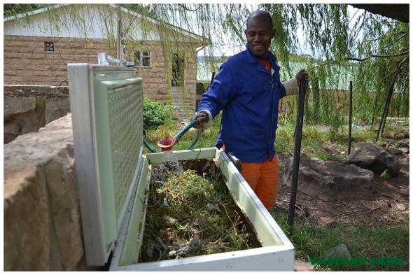 Compost 018
